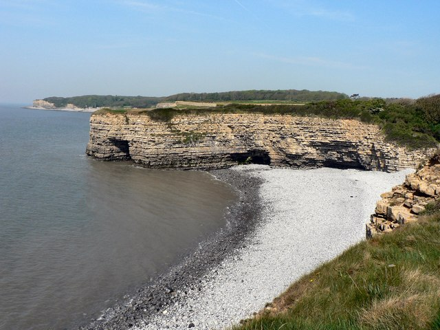 Cliffs at Tresillian Bay, Llantwit Major - geograph.org.uk - 849384