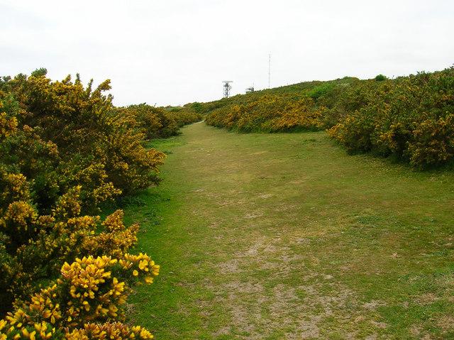 Coastguard Lookout, Fire Hills - geograph.org.uk - 423798