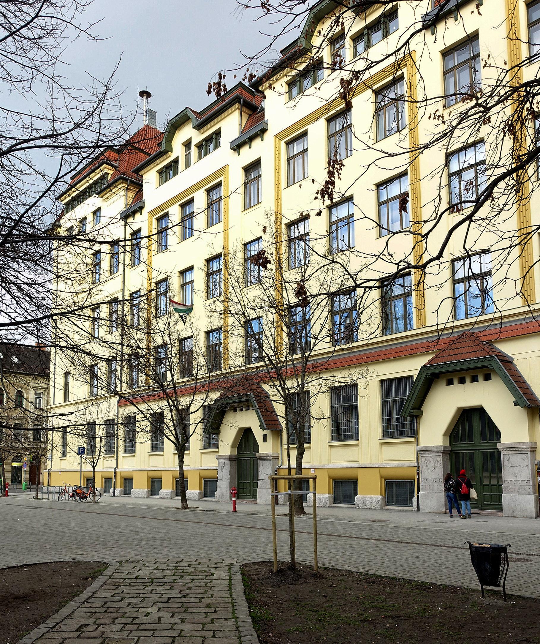 meet az általános iskolában)
