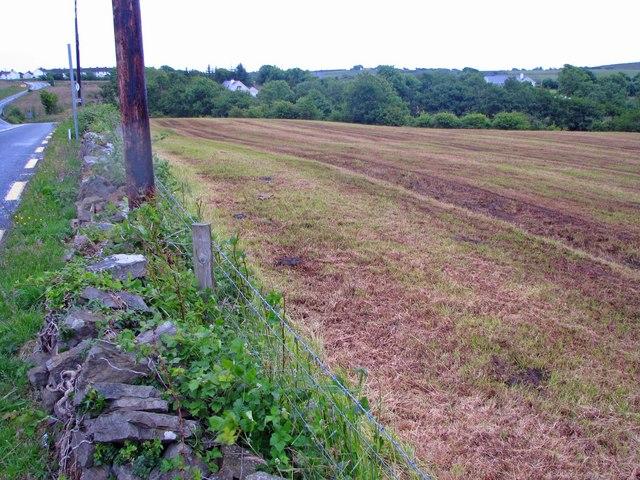 V blízkosti ciest býva pôda znečistená