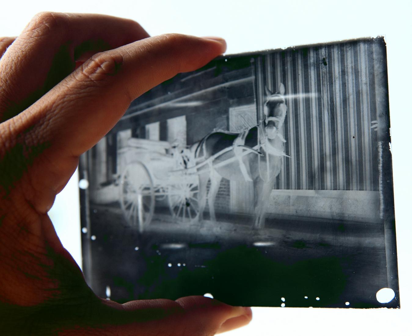 Civil War Glass Plate Negatives