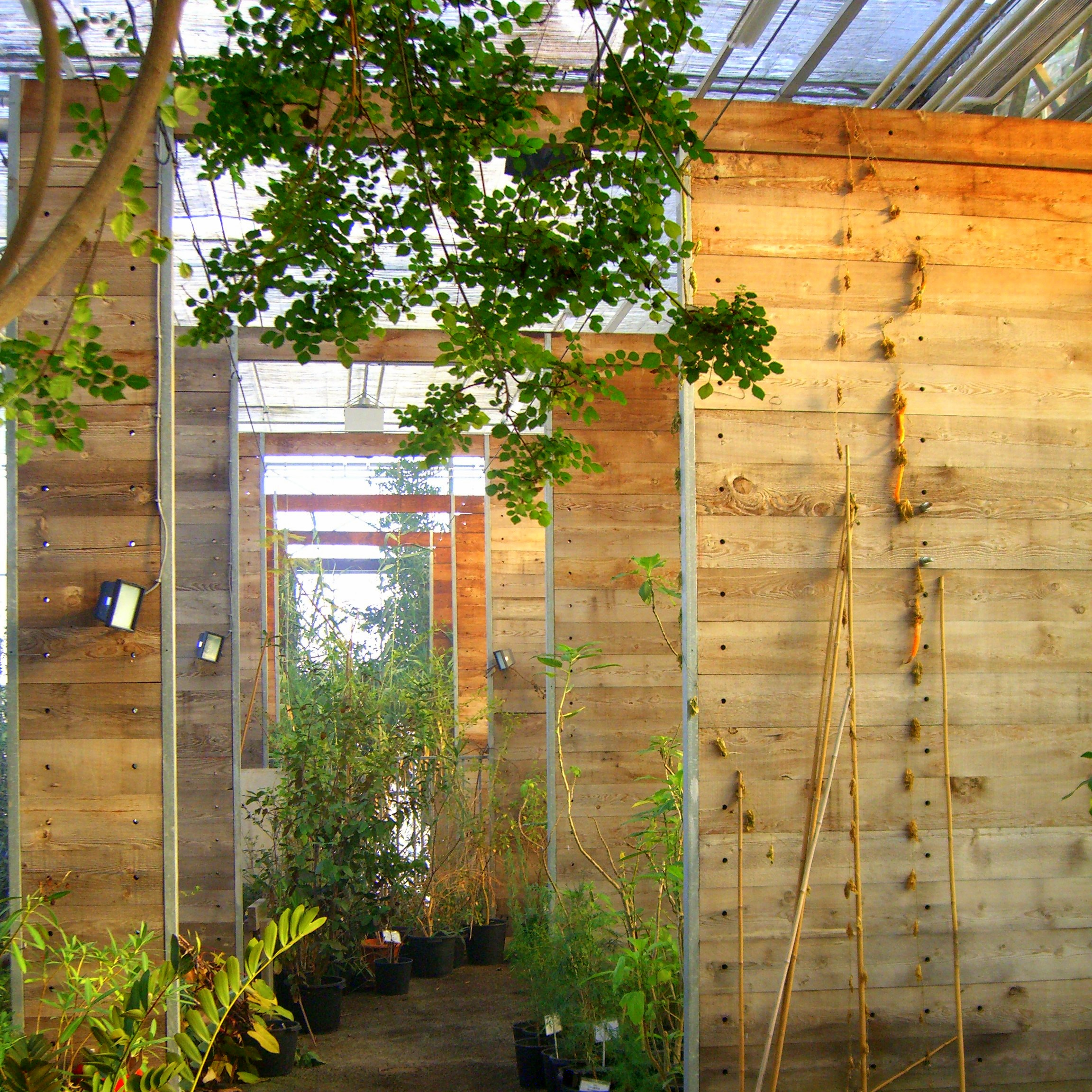 File modern wikimedia commons for Indoor gardening wikipedia