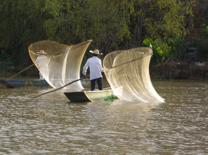 Lake Patzcuaro is one of the places where dwarf crayfish can be found ...
