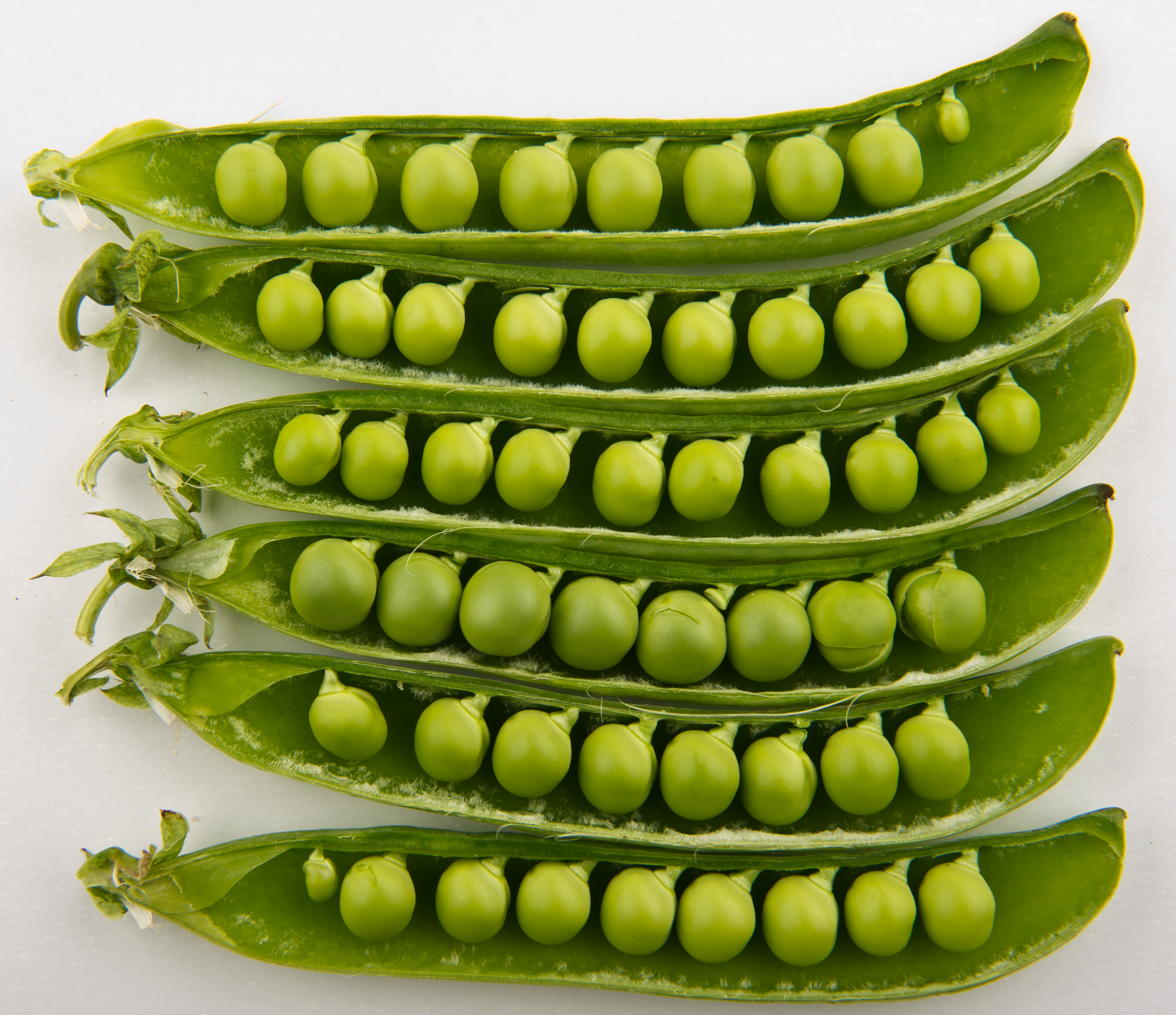 Image of Peas