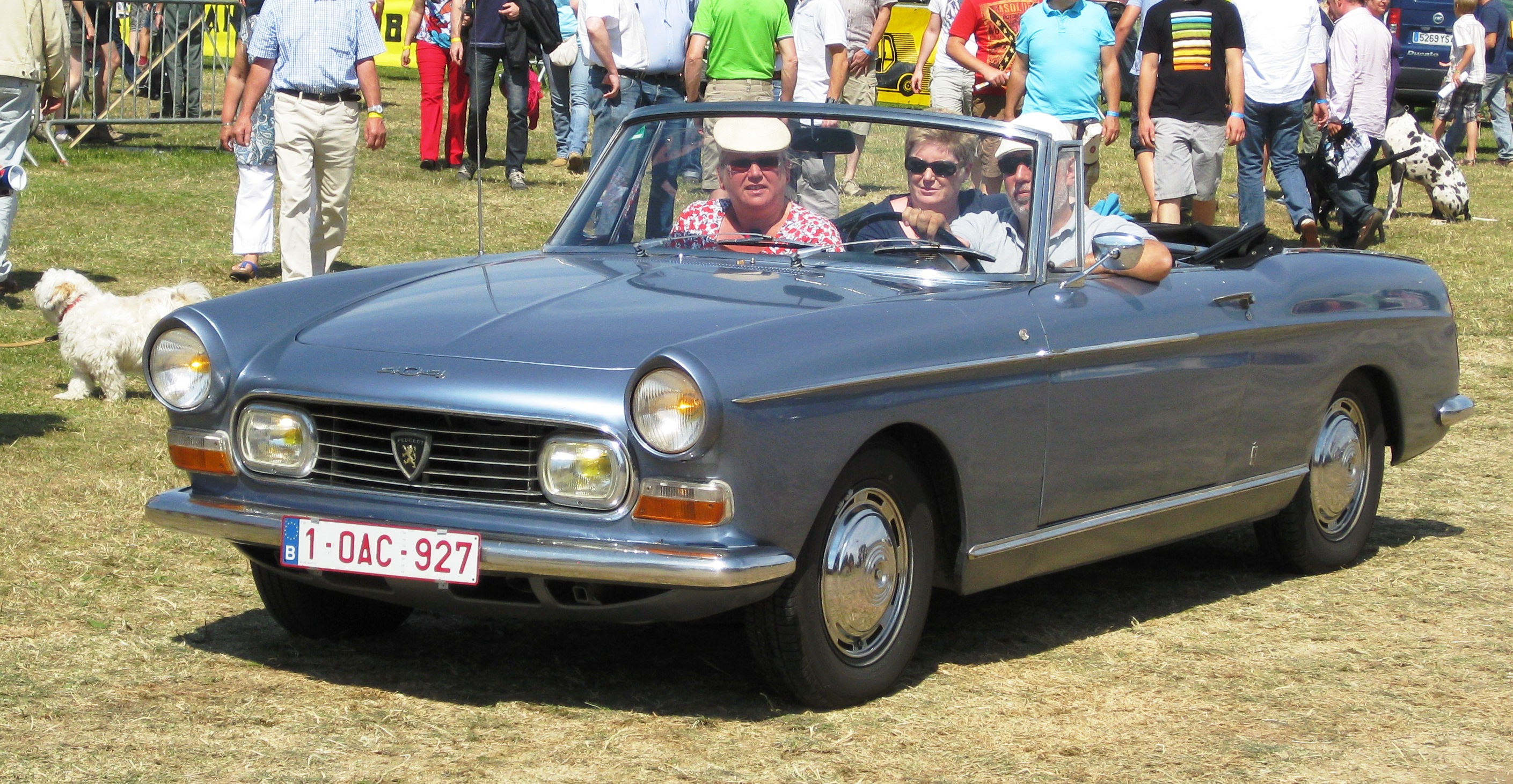 file peugeot 404 cabriolet schaffen diest 2012 jpg. Black Bedroom Furniture Sets. Home Design Ideas