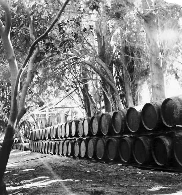 גן-שמואל-חביות מיץ מאוחסנות בפרדס 1950-4