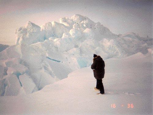 Pressure ridge -- where two ice floes meet.jpg