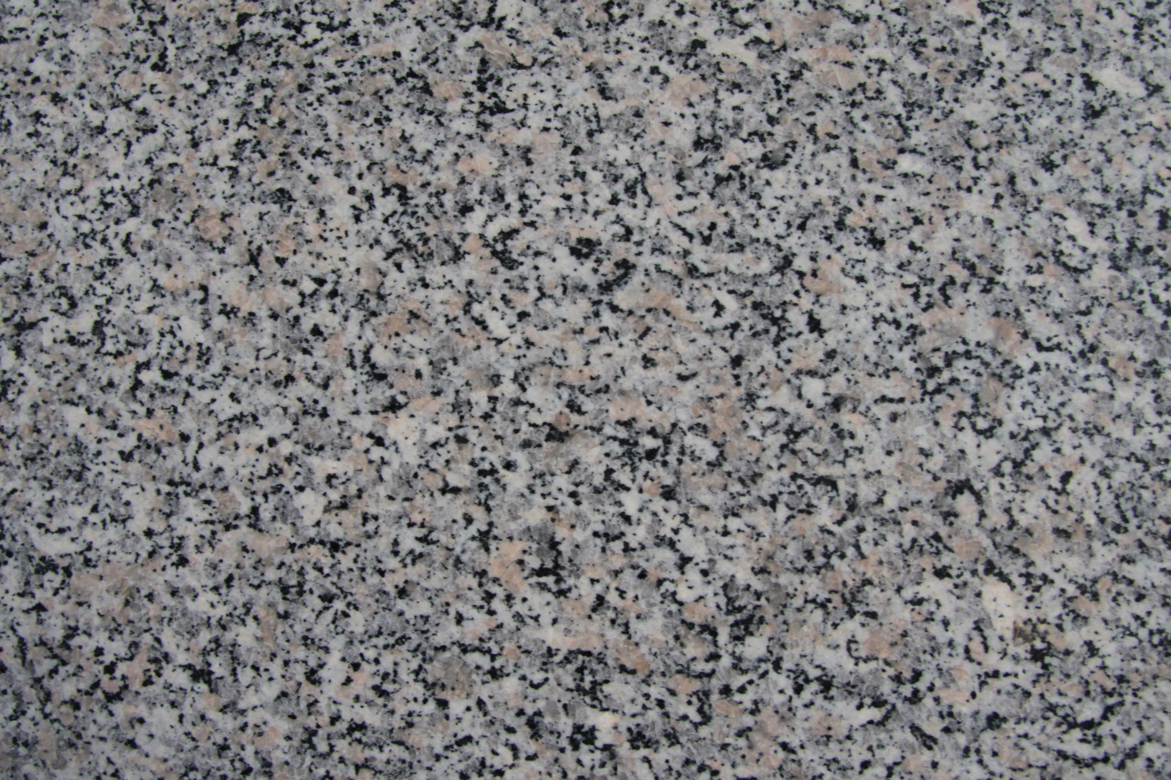 File rosa beta wikimedia commons for Photo de granite
