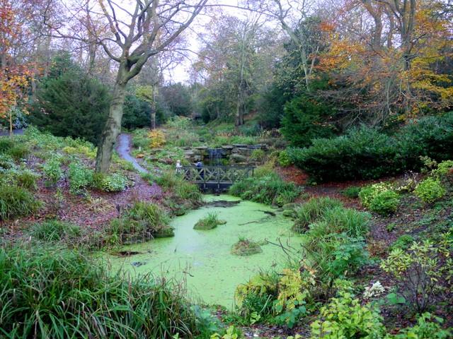 The Dene, Saltwell Park - geograph.org.uk - 1580006