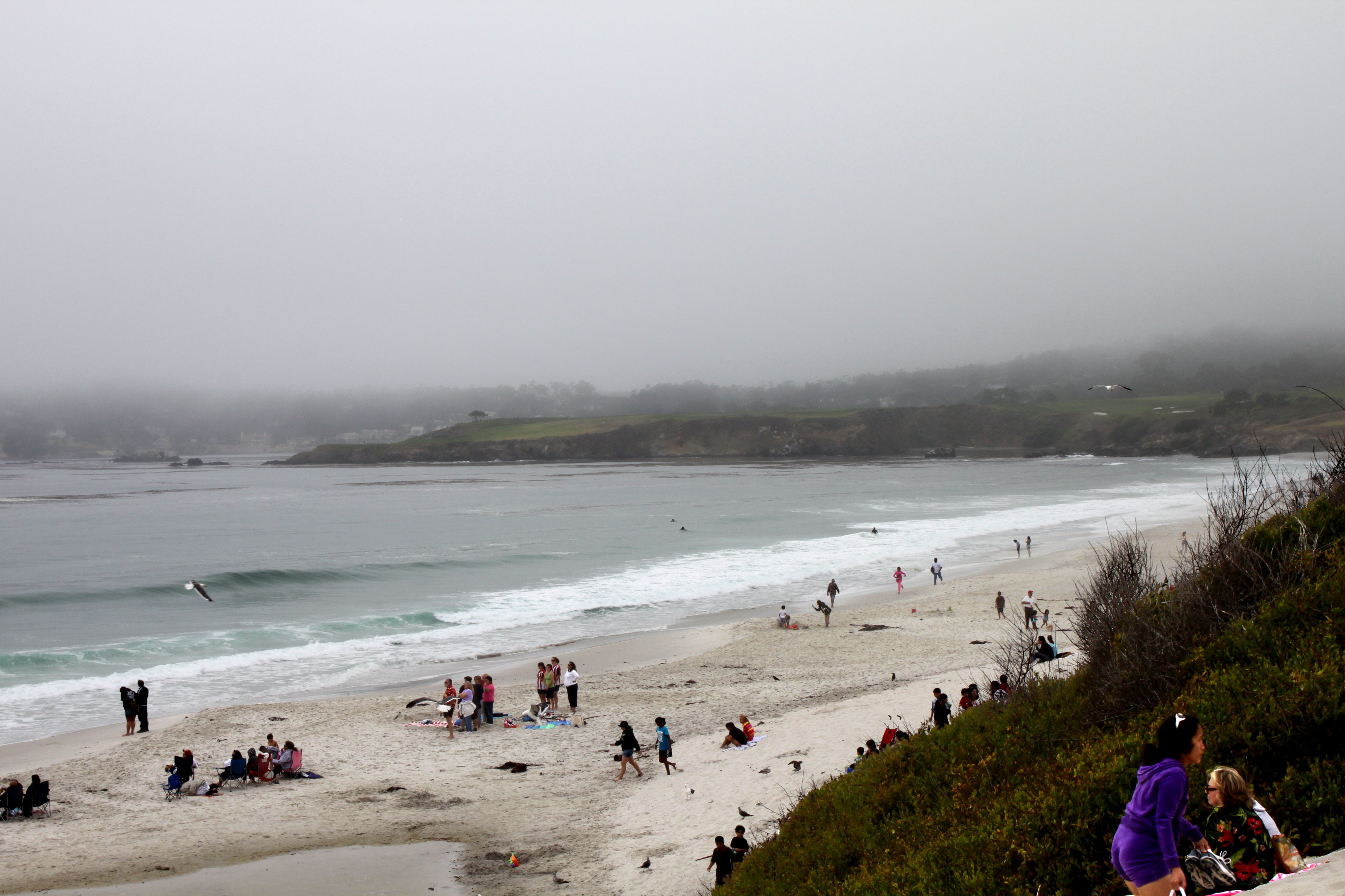 carmel by the sea buddhist single women Who our retreats are suitable for in  or not feel you should do the gentle sea walk when  although most of our retreats have both men and women on them single .