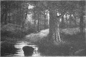Toby_Creek_in_the_late_1800s_or_early_19