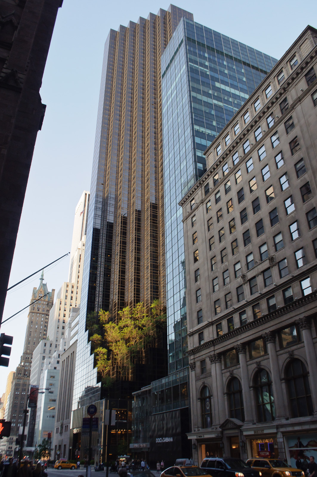 NO PLACE FOR NORMAL: NEW YORK: 206. Tiffany