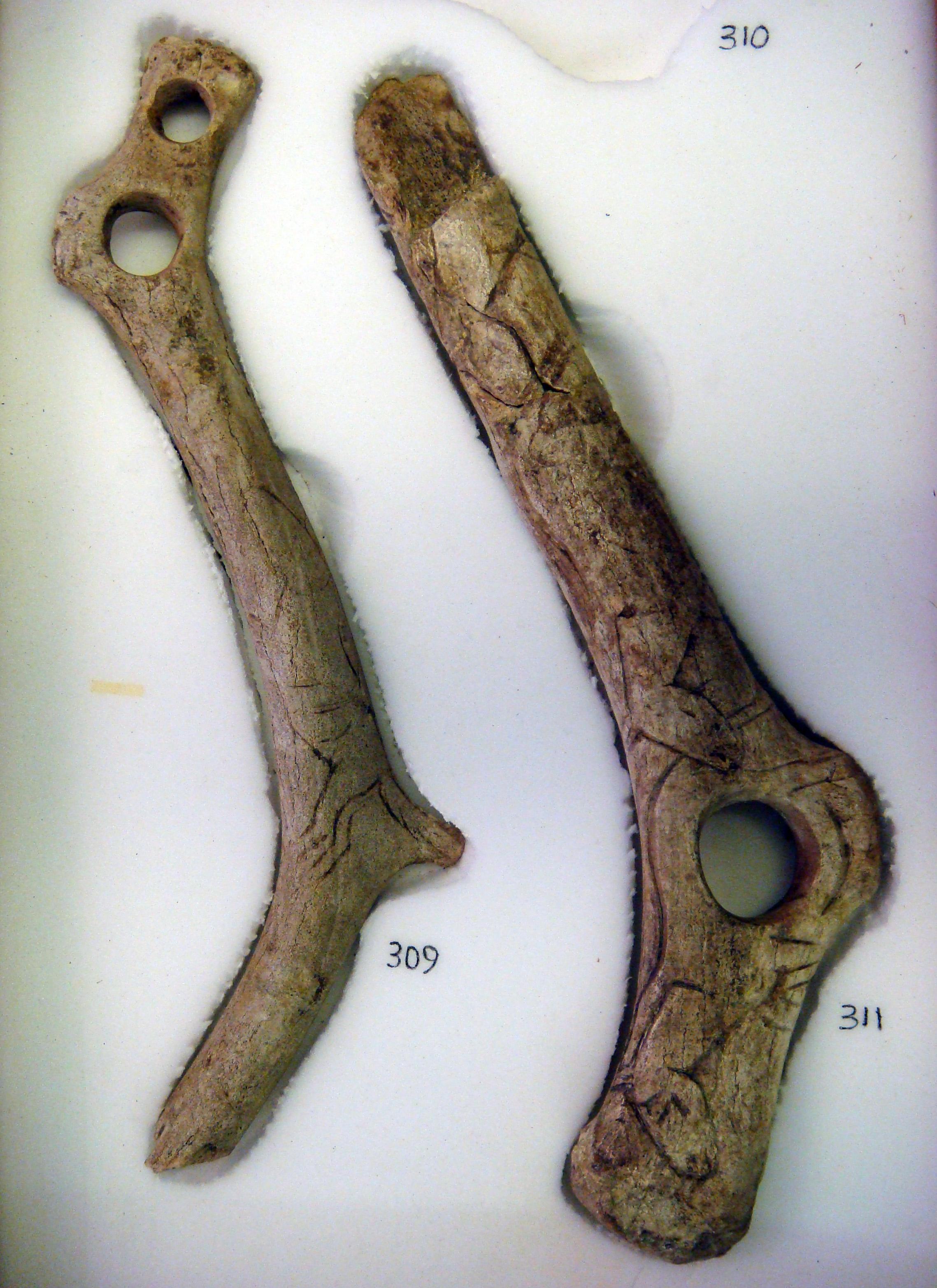 Description Upper paleolithic reindeer antler tools with figurative ...