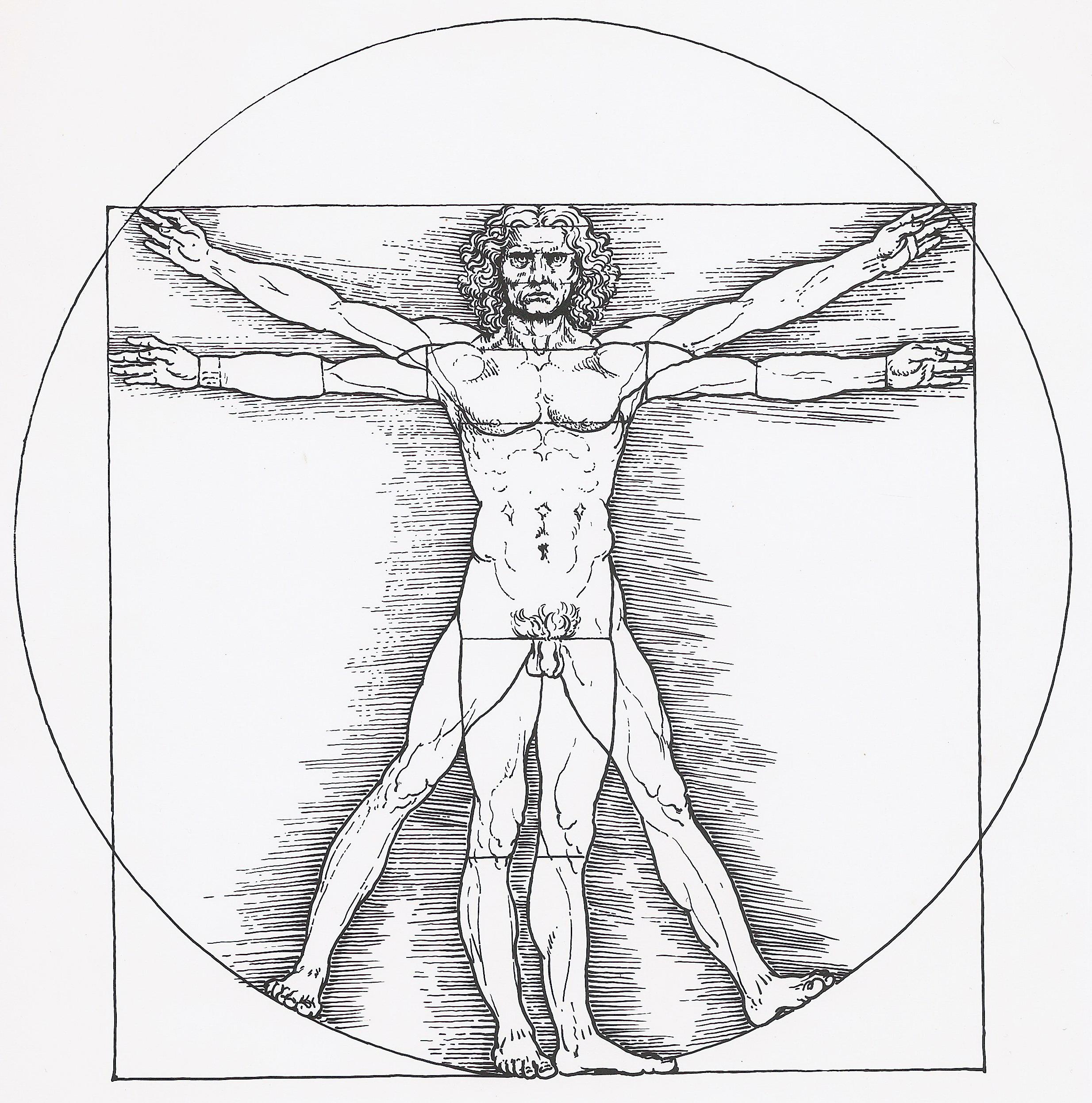 Vitruvianischer Mann.jpg