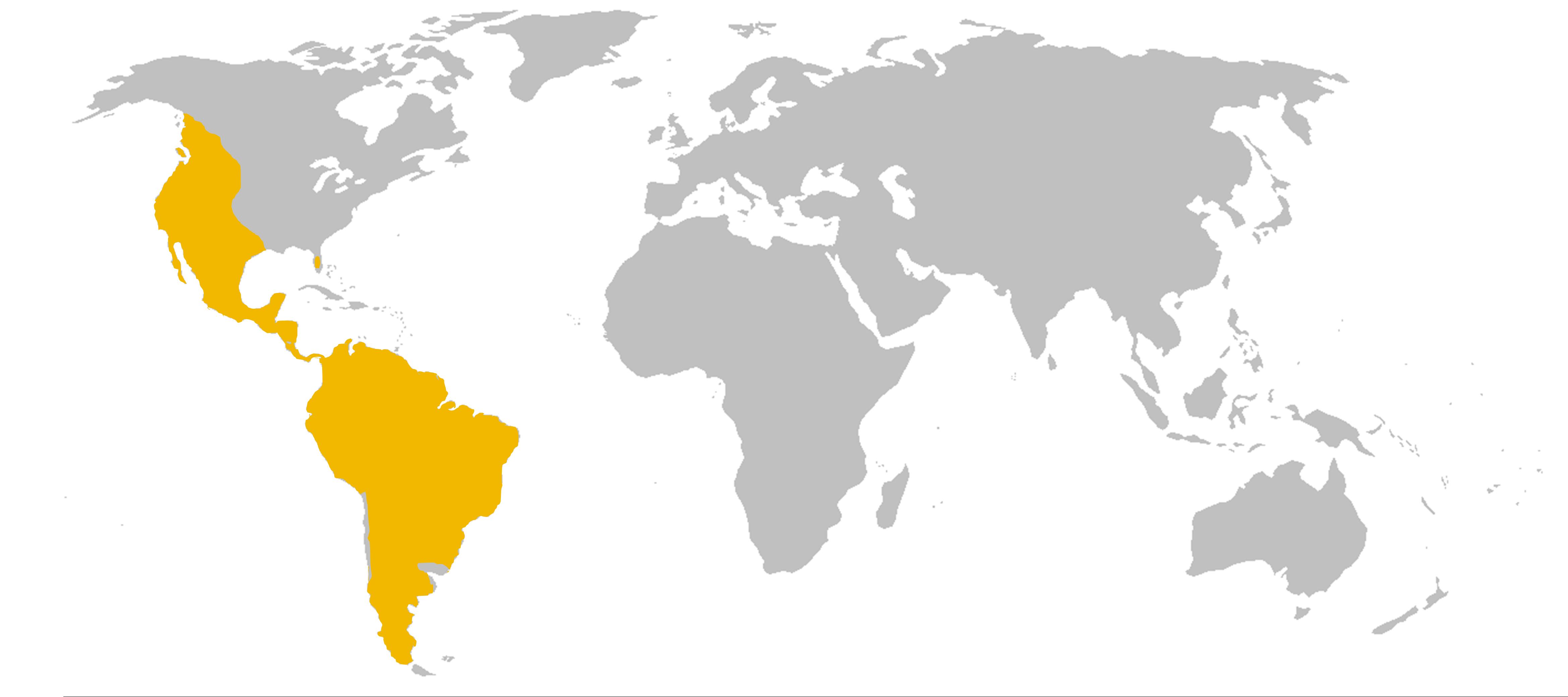 puma germany wiki