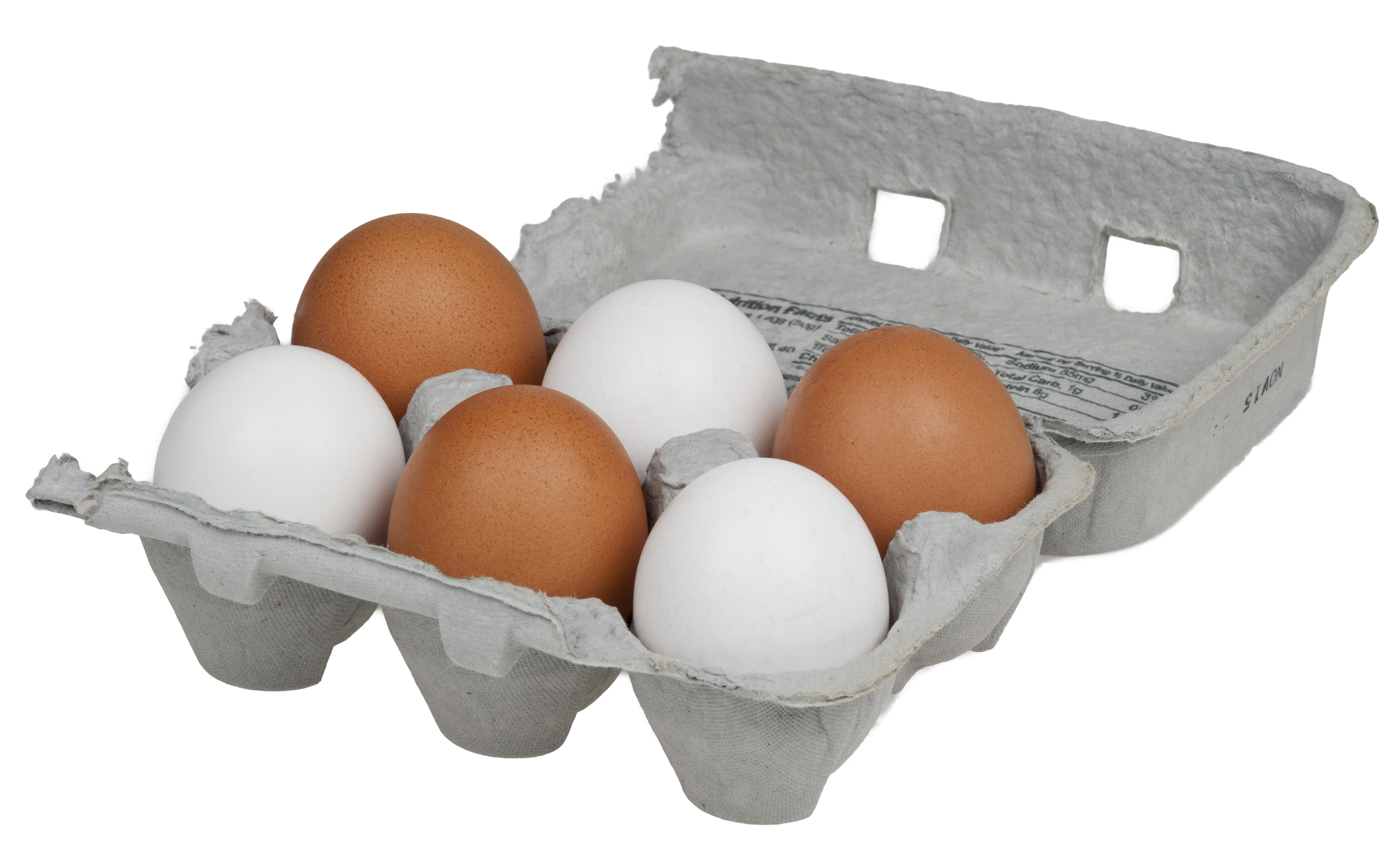 Egg Packaging Market Wind Turbine  Market in 360MarketUpdates.com