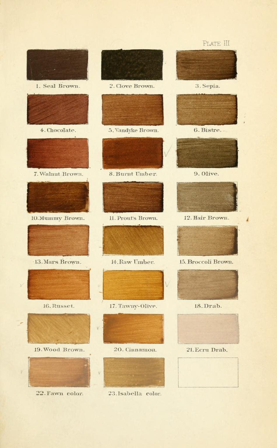 mummy brown - Wiktionary