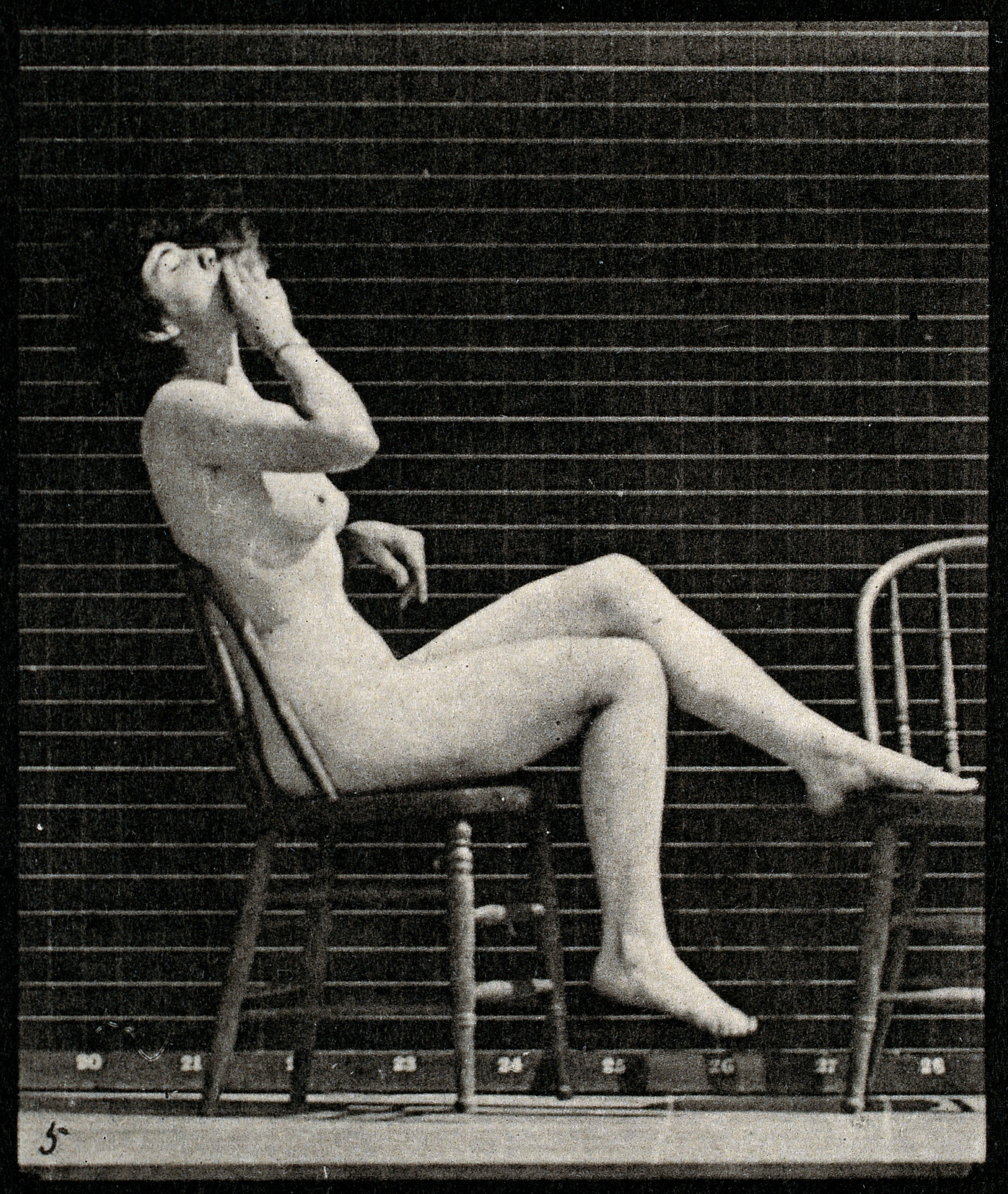 from Aden nude woman on a chair