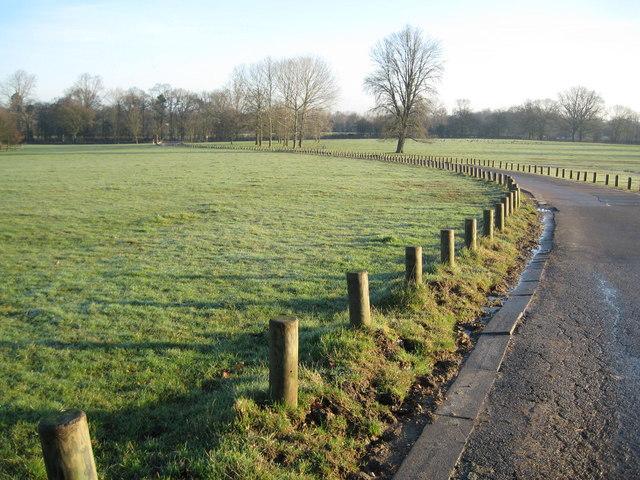 Aldenham Country Park - geograph.org.uk - 682683