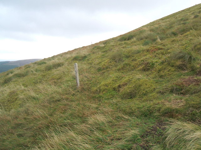 Ancient fence posts on Hedgehope Hill - geograph.org.uk - 1507873