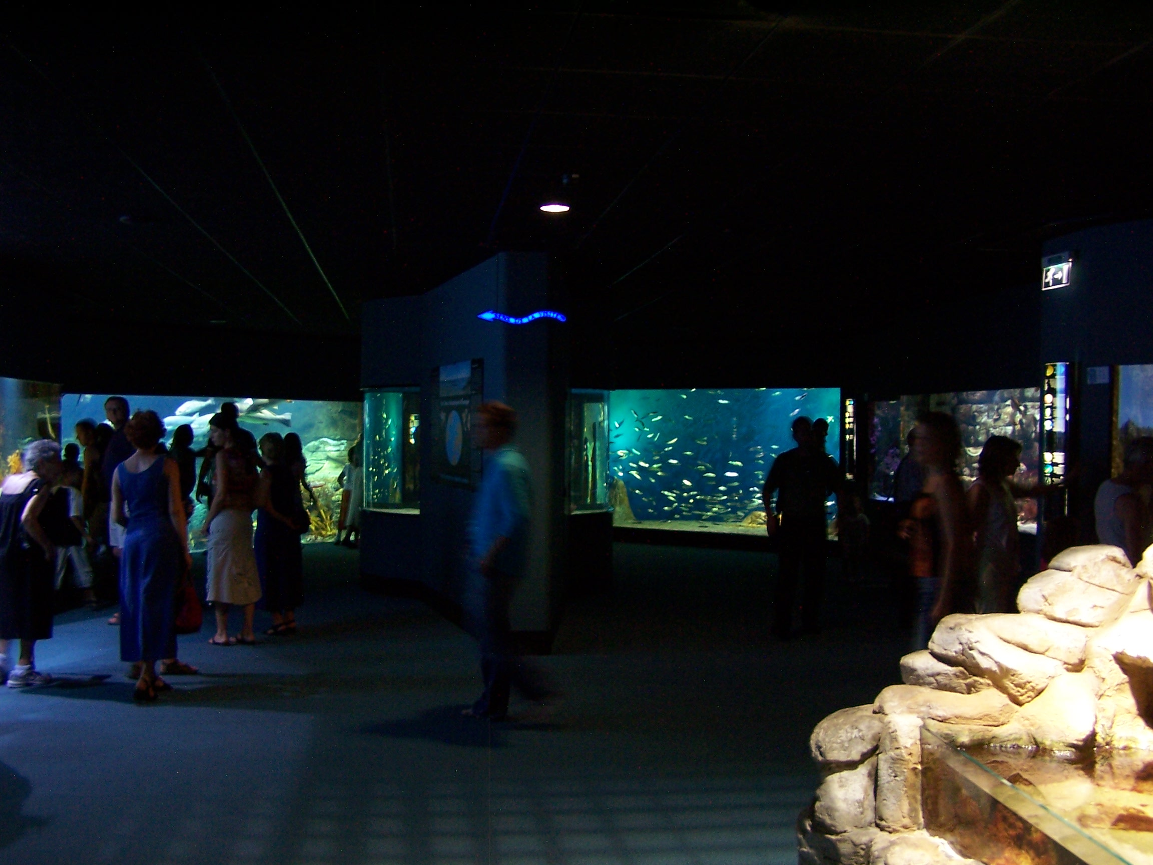 File Aquarium De La Rochelle Bassins