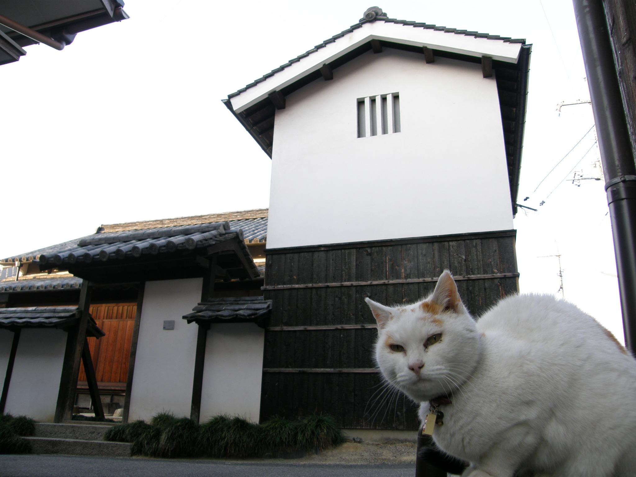 fileart house project in naoshima kadoya������� �������