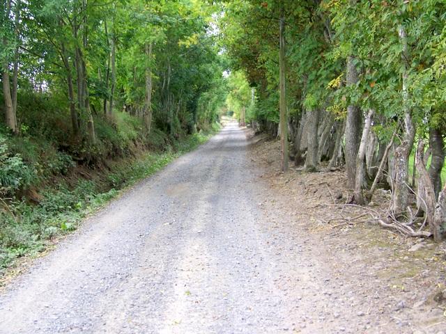 Cateran Trail, Lornty - geograph.org.uk - 1533024