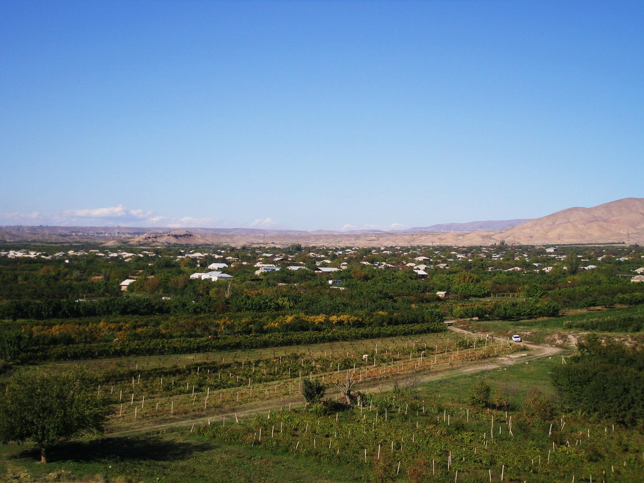 Dvin, Ararat