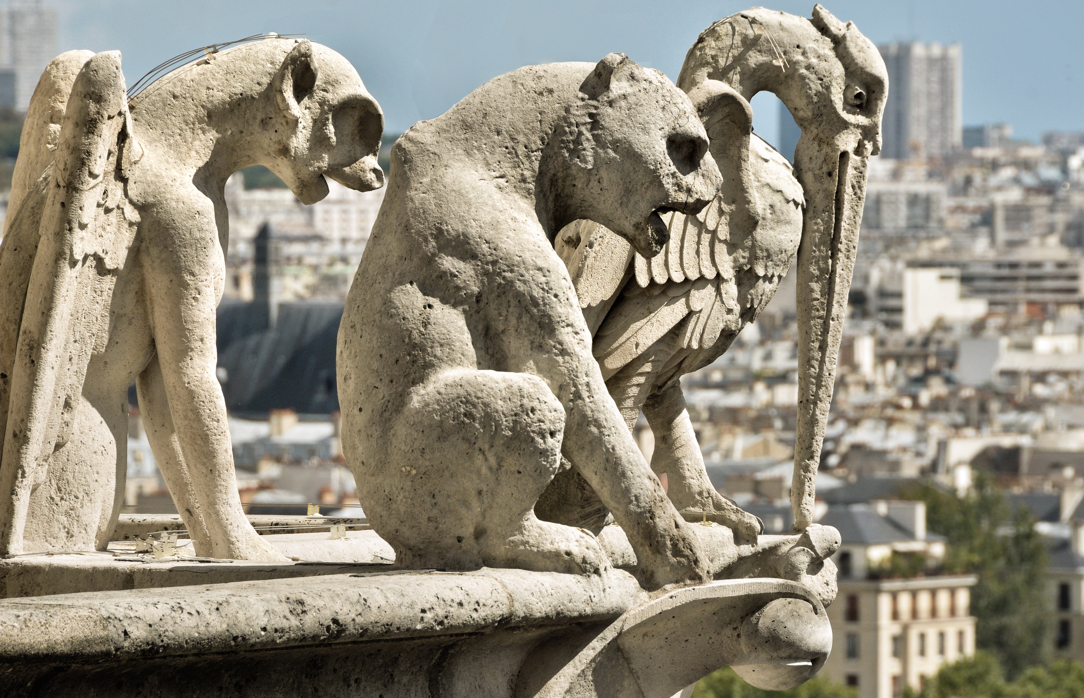 File:Gargoyles and chimeras 1, Notre-Dame de Paris 2011.jpg - Wikimedia Commons