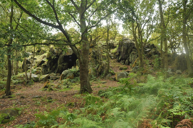 High Cademan, Cademan Wood, Charnwood Forest - geograph.org.uk - 1467729