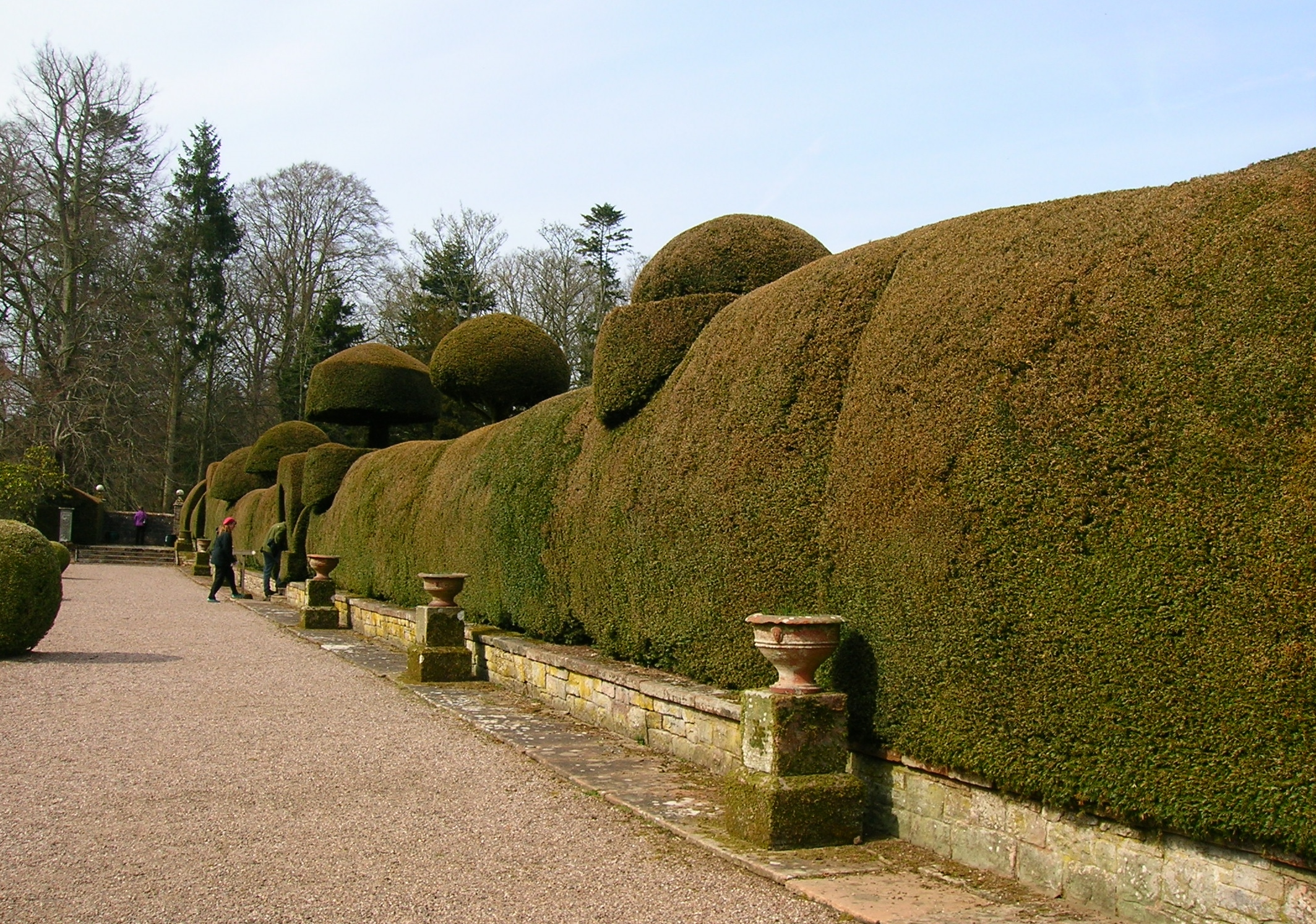 File:Hutton-in-the-Forest. Walled garden and topiary.JPG - Wikimedia ...