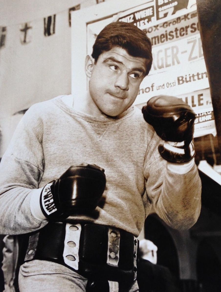 Mildenberger Boxer