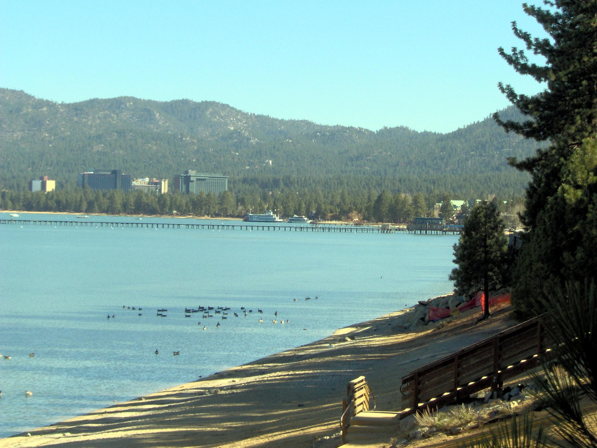 plague-salt-lake-tahoe