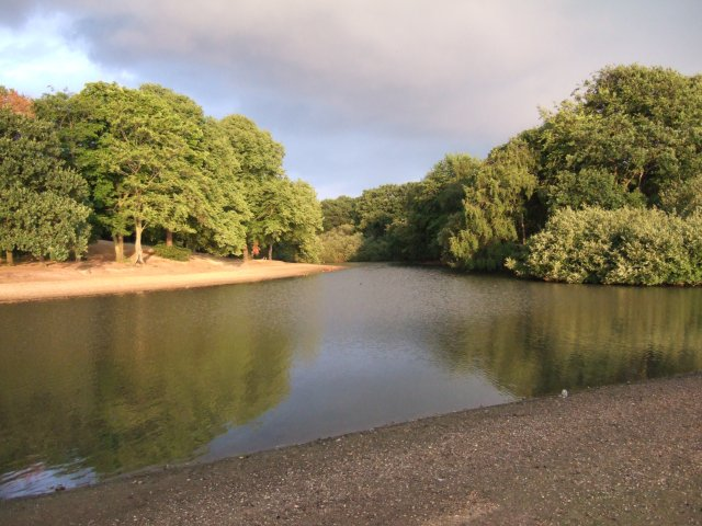 Lake and wood in Wanstead Flats - geograph.org.uk - 112240
