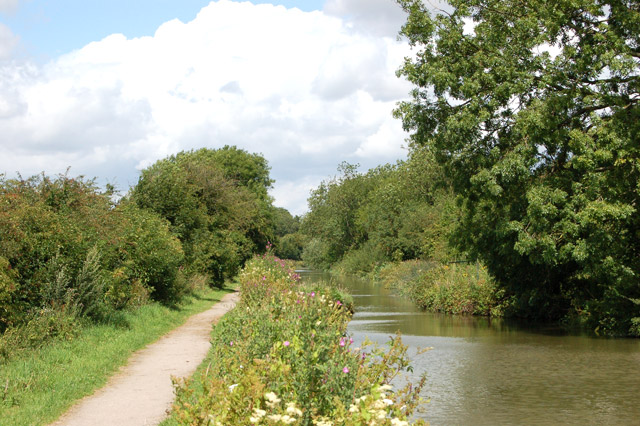 File:Looking northwest along the Oxford Canal near Clifton - geograph.org.uk - 1414877.jpg