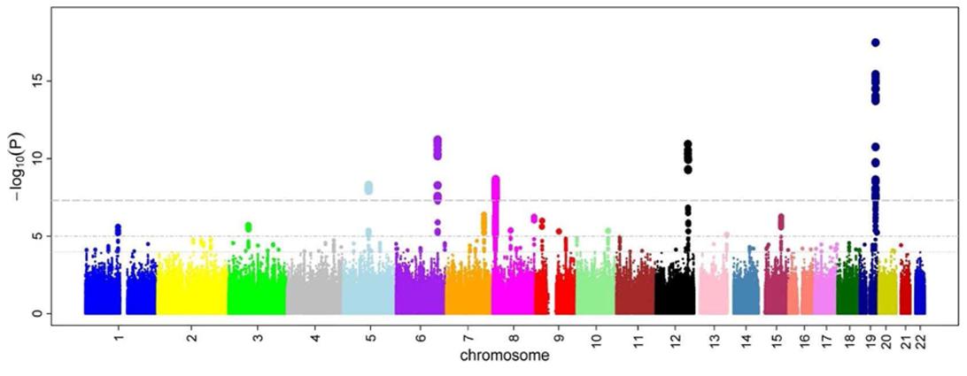 A genome-wide association study of autism reveals a common ...