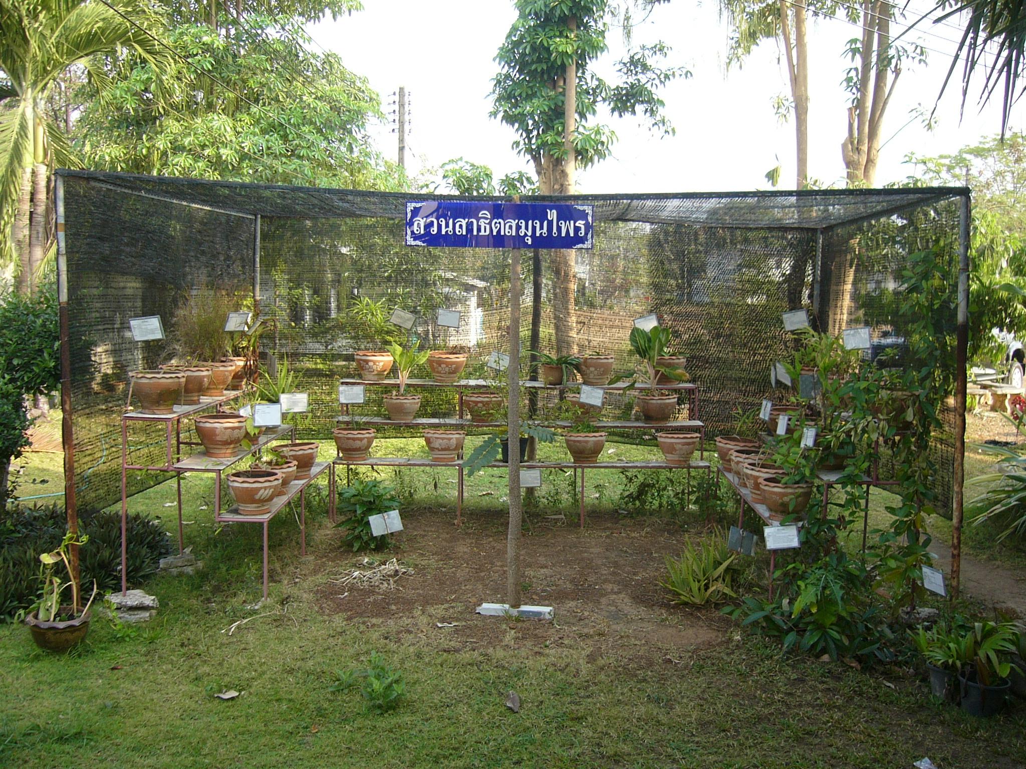 FileMedicinal herbs garden hospitalJPG Wikimedia Commons