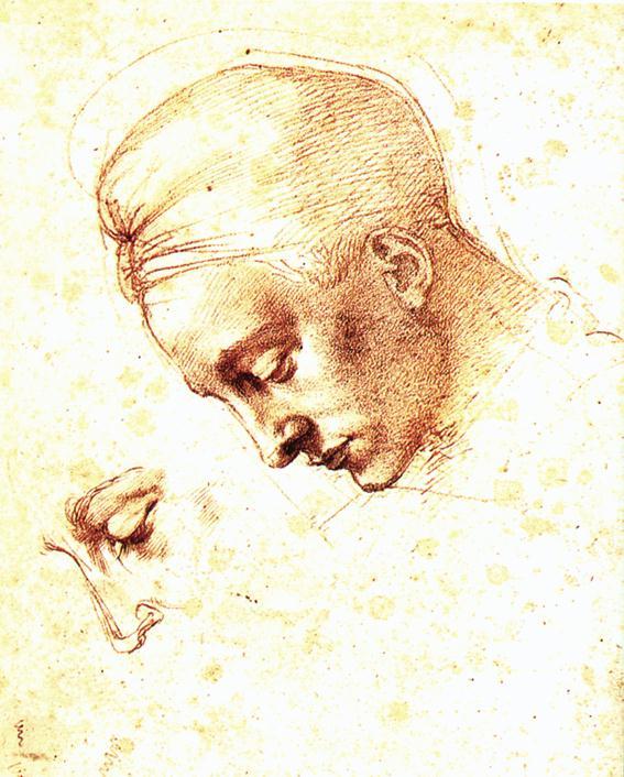 File:Michelangelo, Study of a Head.jpg - Wikimedia Commons