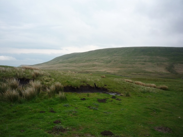 Paths towards Great Whernside - geograph.org.uk - 1344055