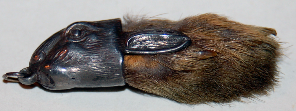 http://upload.wikimedia.org/wikipedia/commons/1/12/Rabbitsfoot.jpg