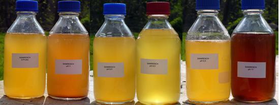 Coloured Glass Urine