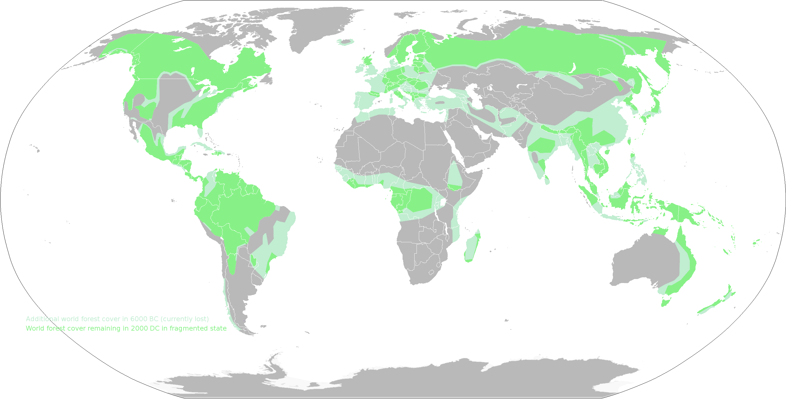 Map Of World Forests.File World Forest Cover Then And Now Png Wikimedia Commons