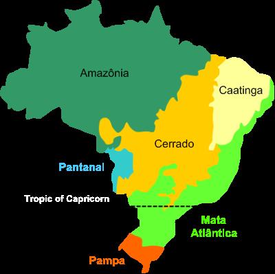 Biomes in Brazil Wikipedia