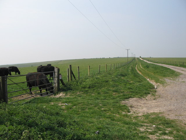 Byway to White Sheet Hill - geograph.org.uk - 417269