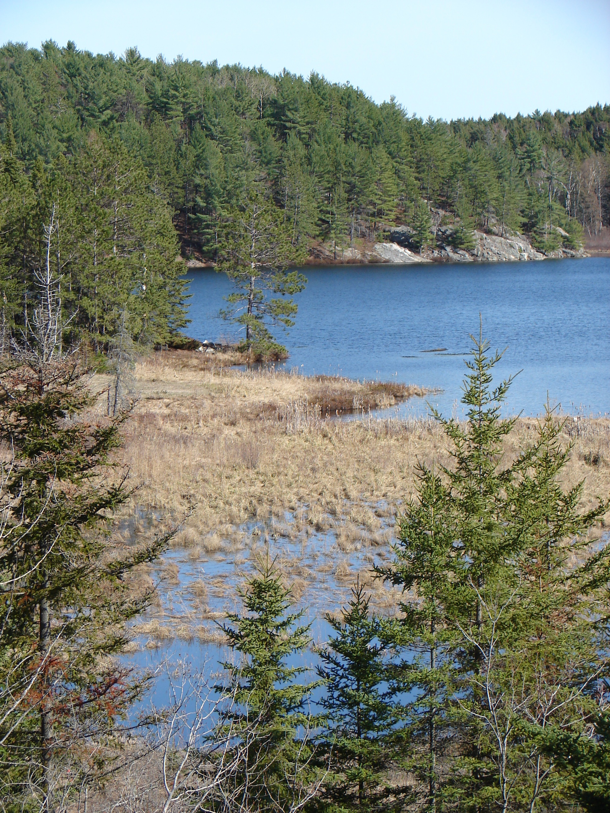SS9 Regional Geography of North America - Canadian Shield