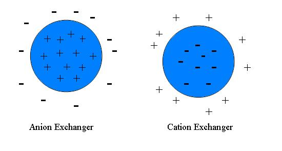 File:Cation+anion exchanger.JPG - Wikimedia Commons