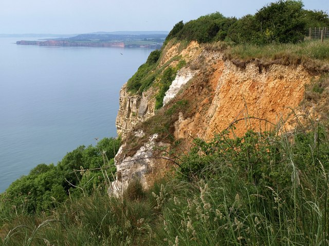 Clifftop, Dunscombe Cliff - geograph.org.uk - 1347466