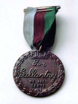 "Bronze medal encircled in a laurel wreath and inscribed ""PDSA For Gallantry We Also Serve"" held from a ring suspender by a ribbon consisting of three equal vertical stripes of dark green, brown and pale blue"
