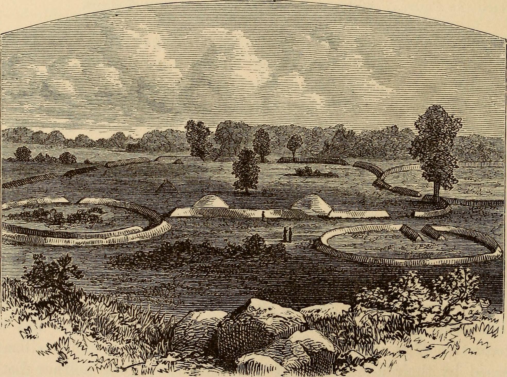 OHIO 1819 OH MAP SHELBY HARDIN WYANDOT DELAWARE COUNTY HISTORY very large