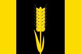 Флаг Карагайского района